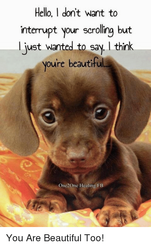 Interruption: Hello, I don'tw  nterupt your scrolling but  just wanted to say, think  oure beautiful  interrupt your scrolling but  One2One Healing FB You Are Beautiful Too!