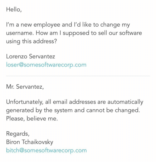 lorenzo: Hello,  I'm a new employee and I'd like to change my  username. How am I supposed to sell our software  using this address?  Lorenzo Servantez  loser@somesoftwarecorp.com  Mr. Servantez,  Unfortunately, all email addresses are automatically  generated by the system and cannot be changed  Please, believe me  Regards,  Biron Tchaikovsky  bitch@somesoftwarecorp.com