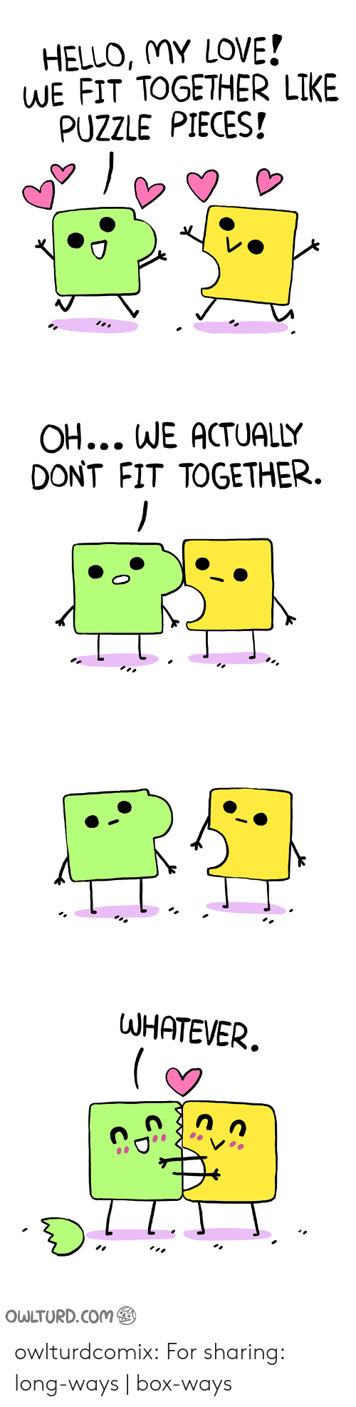 Hello My: HELLO, MY LOVE!  WE FIT TOGETHER LIKE  PUZZLE PIECES!   OH... WE ACTUALLY  DONT FIT TOGETHER.   WHATEVER.  OWLTURD.COM  C owlturdcomix:  For sharing: long-ways | box-ways