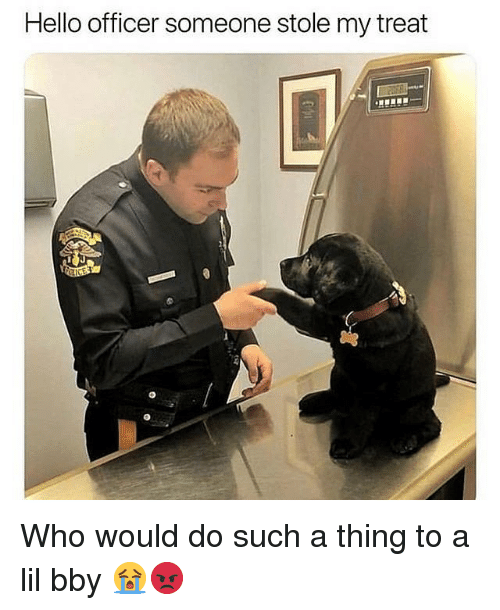 Hello, Memes, and 🤖: Hello officer someone stole my treat Who would do such a thing to a lil bby 😭😡