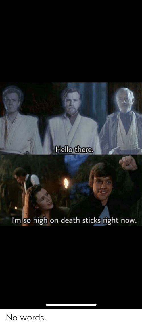 Hello, Reddit, and Death: Hello there.  I'm so high on death sticks right now No words.