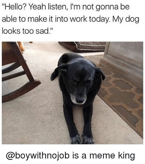 """Funny, Hello, and Meme: """"Hello? Yeah listen, I'm not gonna be  able to make it into work today. My dog  looks too sad."""" @boywithnojob is a meme king"""