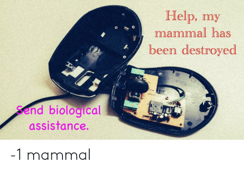 Assistance: Help, my  mammal has  been destroyed  Send biological  assistance. -1 mammal