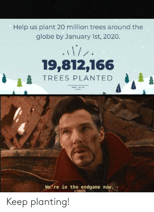 endgame: Help us plant 20 million trees around the  globe by January 1st, 2020.  19,812,166  TREES PLANTED  We' re in the endgame now. Keep planting!