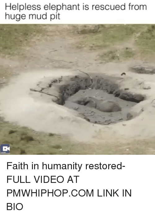 faith in humanity restored: Helpless elephant is rescued from  huge mud pit Faith in humanity restored- FULL VIDEO AT PMWHIPHOP.COM LINK IN BIO