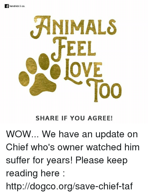 animal feelings: hendrick & co.  ANIMALS  FEEL  Too  SHARE IF YOU AGREE! WOW... We have an update on Chief who's owner watched him suffer for years! Please keep reading here : http://dogco.org/save-chief-taf