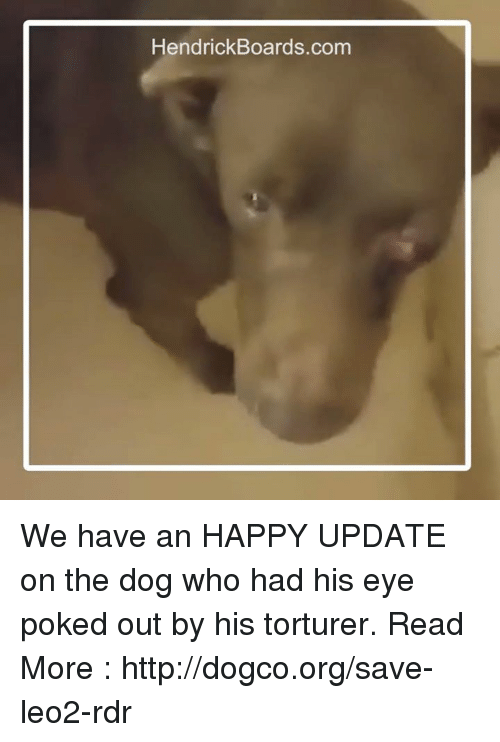 Memes, 🤖, and Poke: HendrickBoards.com We have an HAPPY UPDATE on the dog who had his eye poked out by his torturer.  Read More : http://dogco.org/save-leo2-rdr