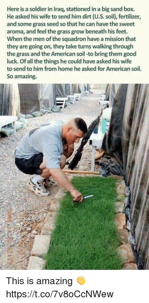 Grasse: Here is a soldier in Iraq, stationed in a big sand box.  He asked his wife to send him dirt (U.S. soil), fertilizer,  and some grass seed so that he can have the sweet  aroma, and feel the grass grow beneath his feet.  When the men of the squadron have a mission that  they are going on, they take turns walking through  the grass and the American soil-to bring them good  luck. Of all the things he could have asked his wife  to send to him from home he asked for American soil.  So amazing. This is amazing 👏 https://t.co/7v8oCcNWew
