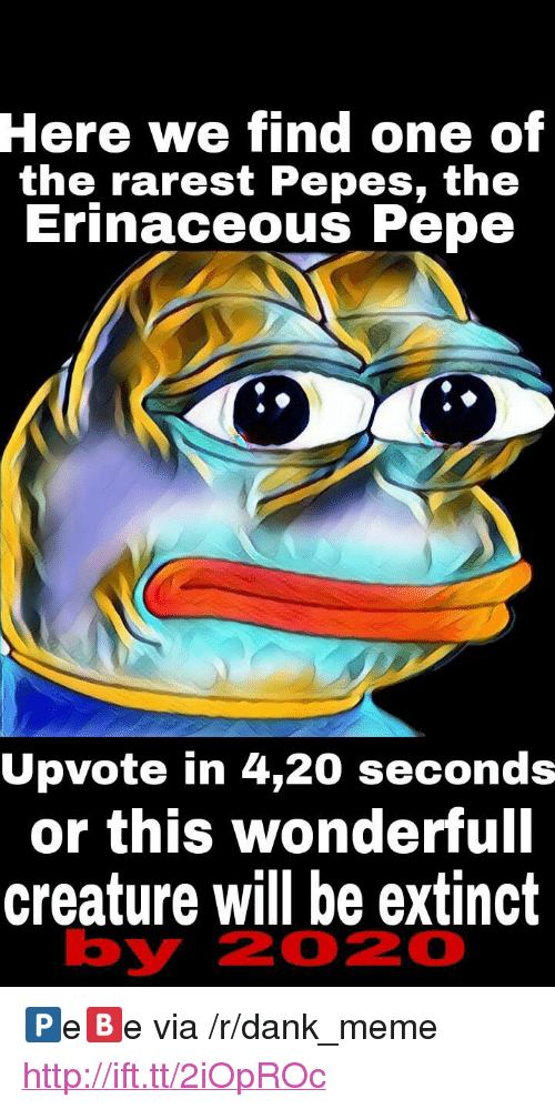 """Pepes: Here  we find one of  the rarest Pepes, th<e  Erinaceous Pepe  Upvote in 4,20 seconds  or this wonderfull  creature will be extinct  by  2020 <p>🅿e🅱e via /r/dank_meme <a href=""""http://ift.tt/2iOpROc"""">http://ift.tt/2iOpROc</a></p>"""