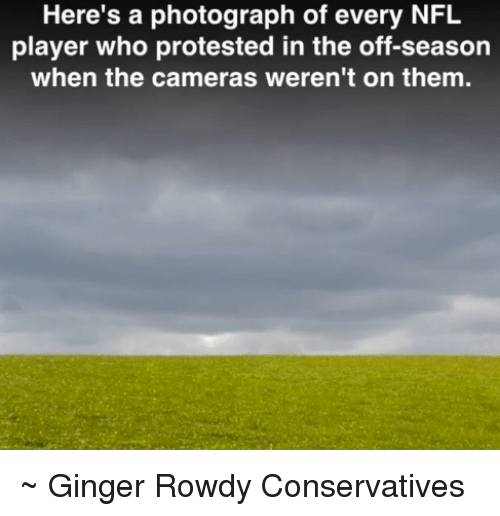 Memes, Nfl, and Rowdy: Here's a photograph of every NFL  player who protested in the off-season  when the cameras weren't on them. ~ Ginger  Rowdy Conservatives
