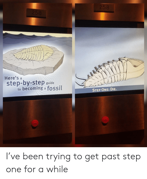 step by step: Here's a  step-by-step guide  to becoming a fossil  STEP ONE: DIE. I've been trying to get past step one for a while