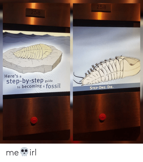 Fossil, Step, and One: Here's a  step-by-step guide  to becoming a fossil  STEP ONE: DIE. me💀irl