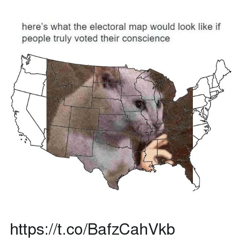 Electoral: here's what the electoral map would look like if  people truly voted their conscience https://t.co/BafzCahVkb