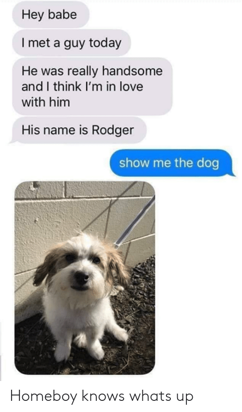 Dank, Love, and Today: Hey babe  I met a guy today  He was really handsome  and I think I'm in love  with him  His name is Rodger  show me the dog Homeboy knows whats up