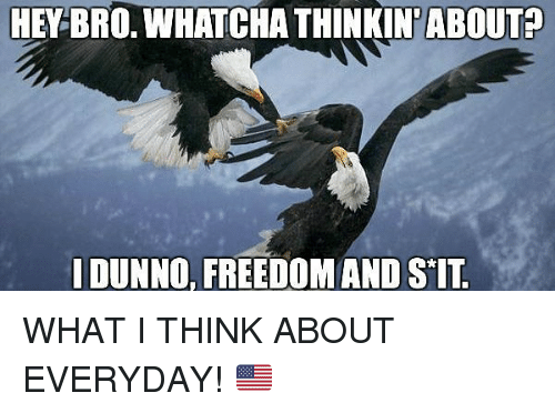 Dunnoe: HEY BRO. WHATCHA THINKIN'ABOUT?  DUNNO, FREEDOMAND SIT WHAT I THINK ABOUT EVERYDAY! 🇺🇸