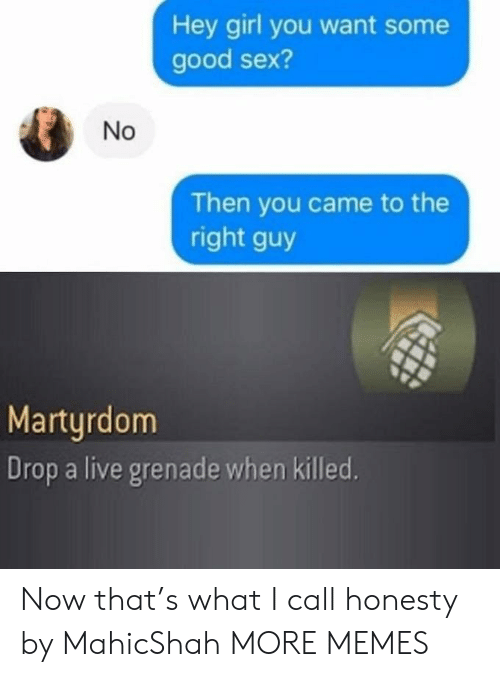 Honesty: Hey girl you want some  good sex?  Then you came to the  right guy  Martyrdom  Drop a live grenade when killed.  No Now that's what I call honesty by MahicShah MORE MEMES
