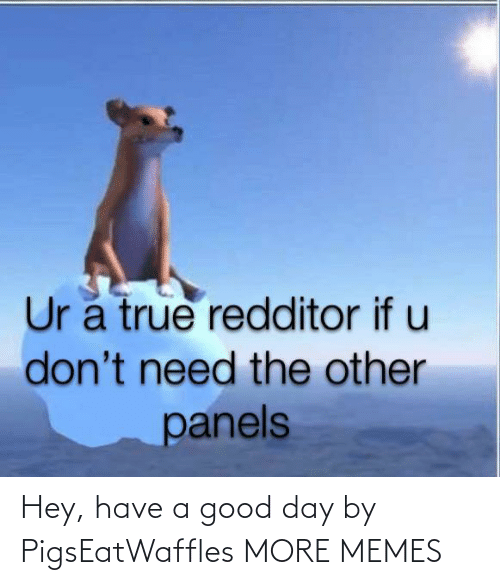 good day: Hey, have a good day by PigsEatWaffles MORE MEMES