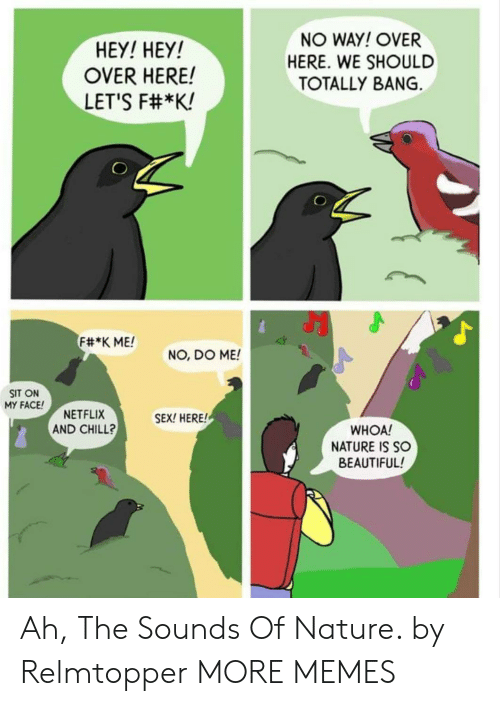 the sounds: HEY! HEY!  OVER HERE!  LET'S F#*K!  NO WAY! OVER  HERE. WE SHOULD  TOTALLY BANG.  F#*K ME!  NO, DO ME!  SIT ON  MY FACE  NETFLIX  AND CHILL?  SEX! HERE!  WHOA!  NATURE IS SO  BEAUTIFUL! Ah, The Sounds Of Nature. by Relmtopper MORE MEMES
