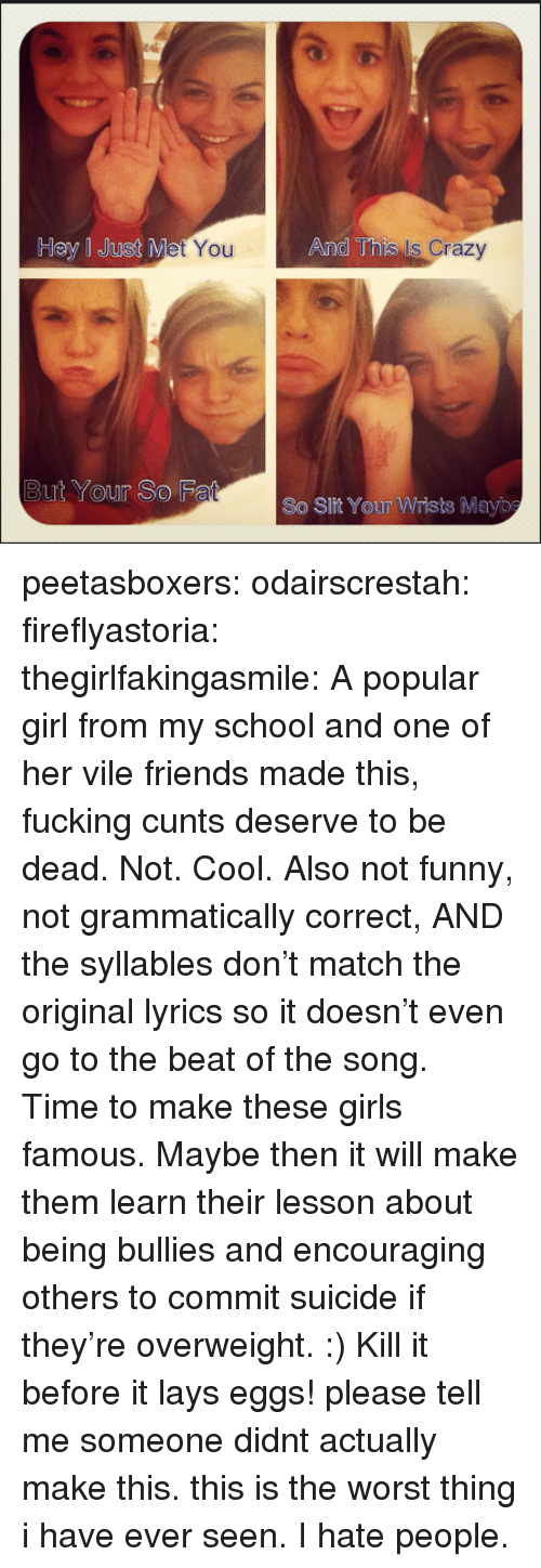 And This Is Crazy: Hey I Just M  You  And This  Is Crazy  But Your So F  So Slit Your Wrists Mayb peetasboxers:  odairscrestah:  fireflyastoria:  thegirlfakingasmile:  A popular girl from my school and one of her vile friends made this, fucking cunts deserve to be dead.   Not. Cool. Also not funny, not grammatically correct, AND thesyllables don't match the original lyrics so it doesn't even go to the beat of the song. Time to make these girls famous. Maybe then it will make them learn their lesson about being bullies and encouraging others to commit suicide if they're overweight. :)  Kill it before it lays eggs! please tell me someone didnt actually make this. this is the worst thing i have ever seen. I hate people.