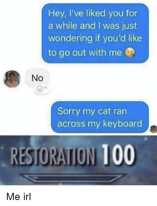 Anaconda, Sorry, and Keyboard: Hey, I've liked you for  a while and I was just  wondering if you'd like  to go out with me  No  Sorry my cat ran  across my keyboard  RESTORATION 100 Me irl