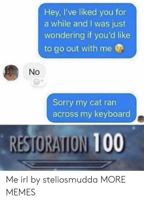Anaconda, Dank, and Memes: Hey, I've liked you for  a while and I was just  wondering if you'd like  to go out with me  No  Sorry my cat ran  across my keyboard  RESTORATION 100 Me irl by steliosmudda MORE MEMES