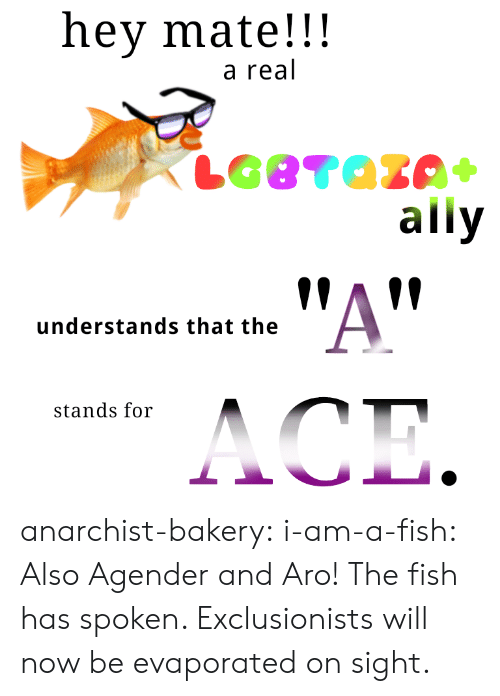 Anarchist: hey mate!!!  a real  ally  !AV  understands that the  stands for anarchist-bakery: i-am-a-fish:  Also Agender and Aro!  The fish has spoken. Exclusionists will now be evaporated on sight.