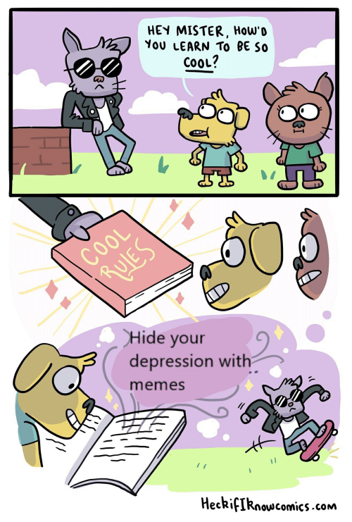 hey mister: HEY MISTER, How'o  You LEARN To BE So  COOL?  COOL  RULES  CHide your  depression with  memes  HeckifIknowcomics.com