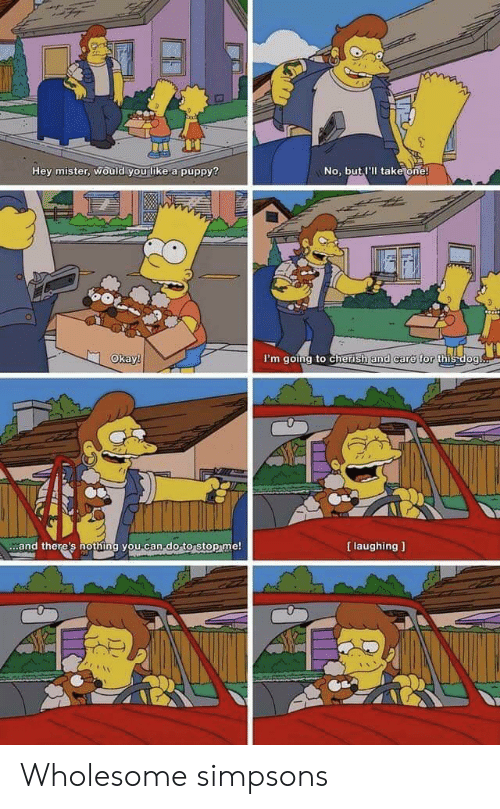 hey mister: Hey mister, would you like a puppy?  No, but I'll take one!  Okay!  I'm going to cherish and care for this dog.  [ laughing  and there's nothing you can-do to stop me! Wholesome simpsons