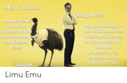 Doug, Information, and Dank Memes: Hey P'm Emu  Doug Here  And we have  found an  altering within  the evidence i  the Epstein  Any knowledge of  the location of the  missing evidence,  or information on  who the  case  perpetrator is,  contact us at  (208)-523-7411  Squawk Limu Emu