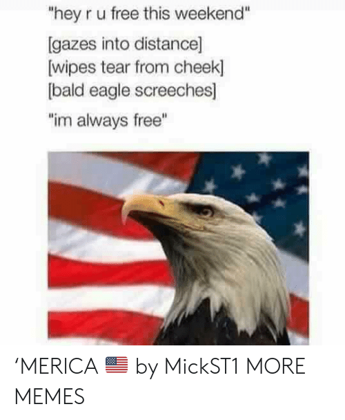 """cheek: """"hey r u free this weekend""""  [gazes into distance]  wipes tear from cheek]  bald eagle screeches]  """"im always free"""" 'MERICA 🇺🇸 by MickST1 MORE MEMES"""