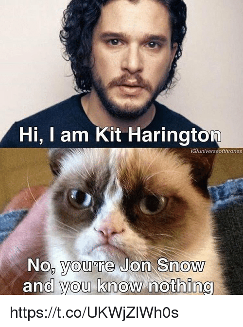 Kit Harington: Hi, I am Kit Harington  IGTuniverseofthrones  No, you're Jon Snow  and you know nothing https://t.co/UKWjZlWh0s