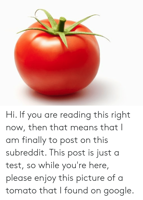 Google, Reddit, and Test: Hi. If you are reading this right now, then that means that I am finally to post on this subreddit. This post is just a test, so while you're here, please enjoy this picture of a tomato that I found on google.