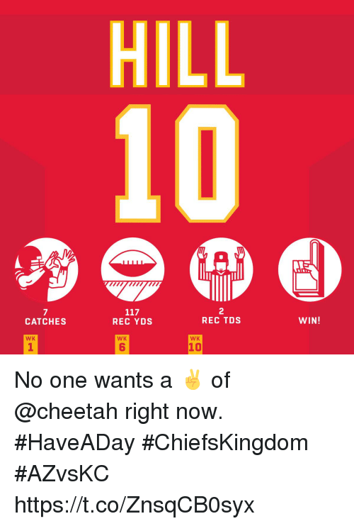 Memes, Cheetah, and 🤖: HILL  7  CATCHES  2  REC TDS  REC YDS  WIN!  WK  WK  WK  1  6  10 No one wants a ✌ of @cheetah right now.   #HaveADay #ChiefsKingdom #AZvsKC https://t.co/ZnsqCB0syx