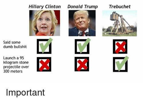 Donald Trump, Dumb, and Hillary Clinton: Hillary Clinton  Donald Trump  Trebuchet  Said some  dumb bullshit  Launch a 95  kilogram stone  projectile over  300 meters Important