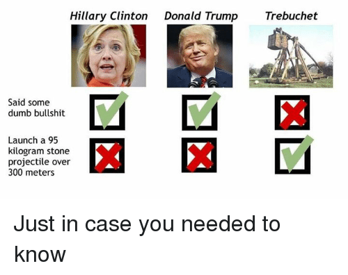 Donald Trump, Dumb, and Hillary Clinton: Hillary Clinton  Donald Trump  Trebuchet  Said some  dumb bullshit  Launch a 95  kilogram stone  projectile over  300 meters Just in case you needed to know