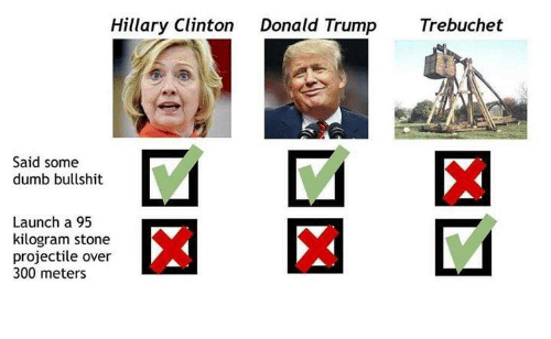 Donald Trump, Dumb, and Hillary Clinton: Hillary Clinton  Donald Trump  Trebuchet  Said some  dumb bullshit  Launch a 95  kilogram stone  projectile over  300 meters