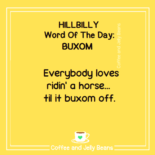 Memes, Coffee, and Horse: HILLBILLY  Word Of The Day:  BUXOM  Everubodu loves  ridin' a horse...  til it buxom off.  Coffee and Jelly Beans