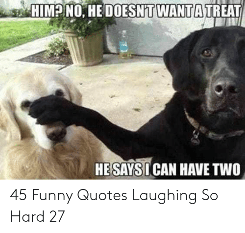 Laughing So Hard: HIM? NO. HE DOESNT WANTA TREAT  HESAYSI CAN HAVE TWO 45 Funny Quotes Laughing So Hard 27