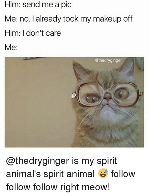 follow-follow-follow: Him: send me a pic  Me: no, I already took my makeup off  Him: don't care  Me:  @thedryginger @thedryginger is my spirit animal's spirit animal 😅 follow follow follow right meow!