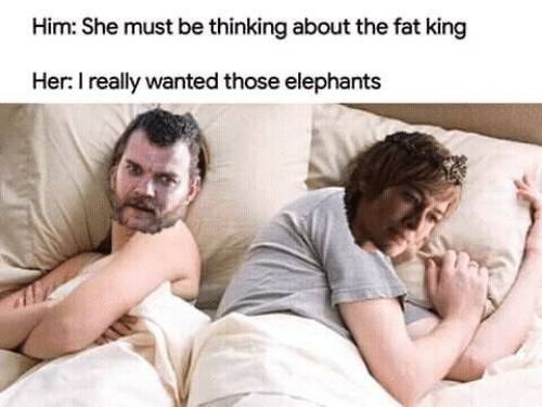 Elephants: Him: She must be thinking about the fat king  Her: I really wanted those elephants