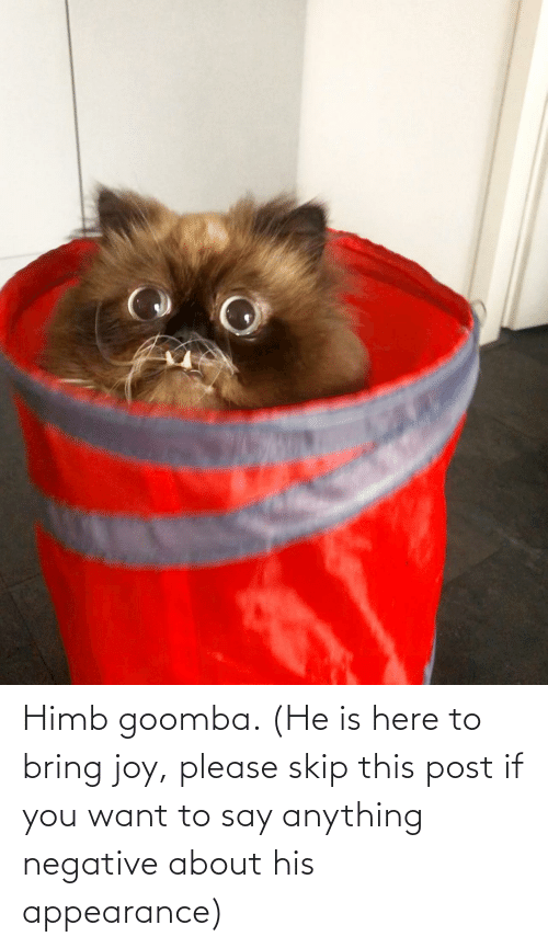 say: Himb goomba. (He is here to bring joy, please skip this post if you want to say anything negative about his appearance)