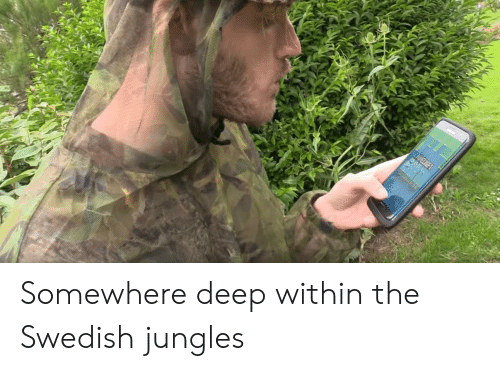 Jungles: HINECRAFT Somewhere deep within the Swedish jungles