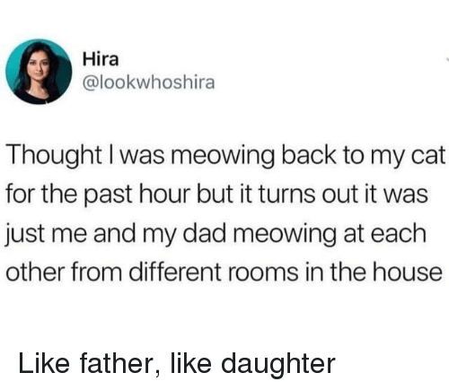 Me And My Dad: Hira  @lookwhoshira  Thought I was meowing back to my cat  for the past hour but it turns out it was  just me and my dad meowing at each  other from different rooms in the house Like father, like daughter