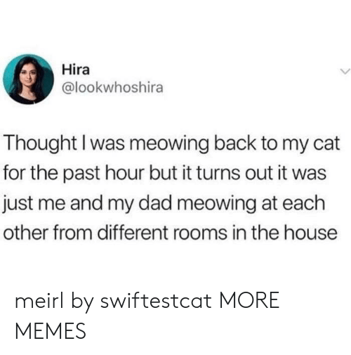 Me And My Dad: Hira  @lookwhoshira  Thought I was meowing back to my cat  for the past hour but it turns out it was  just me and my dad meowing at each  other from different rooms in the house meirl by swiftestcat MORE MEMES