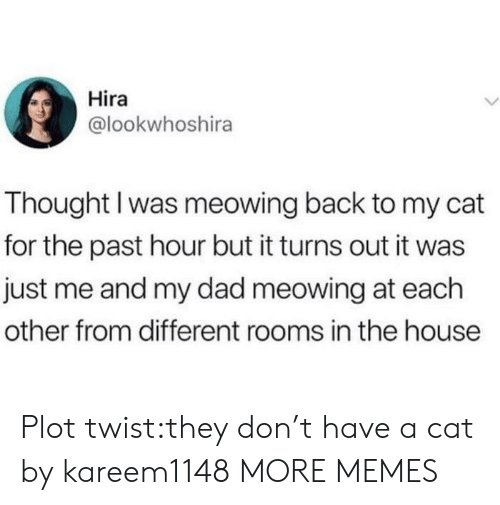 Me And My Dad: Hira  @lookwhoshira  Thought I was meowing back to my cat  for the past hour but it turns out it was  just me and my dad meowing at each  other from different rooms in the house Plot twist:they don't have a cat by kareem1148 MORE MEMES