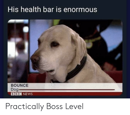 enormous: His health bar is enormous  BOUNCE  Dog-  BBC NEWS Practically Boss Level