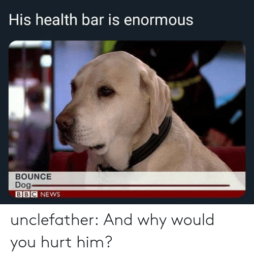 enormous: His health bar is enormous  BOUNCE  Dog  BBC NEWS unclefather:  And why would you hurt him?