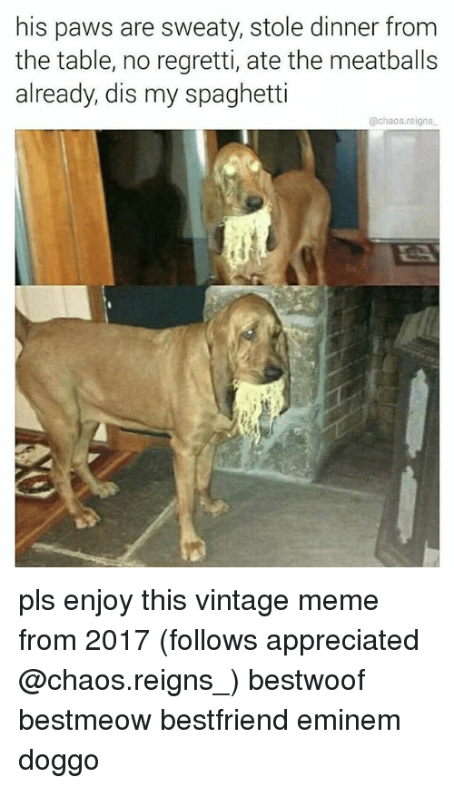 meatballs: his paws are sweaty, stole dinner from  the table, no regretti, ate the meatballs  already, dis my spaghetti  @chaos.reigns pls enjoy this vintage meme from 2017 (follows appreciated @chaos.reigns_) bestwoof bestmeow bestfriend eminem doggo