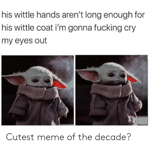 Im Gonna: his wittle hands aren't long enough for  his wittle coat i'm gonna fucking cry  my eyes out Cutest meme of the decade?
