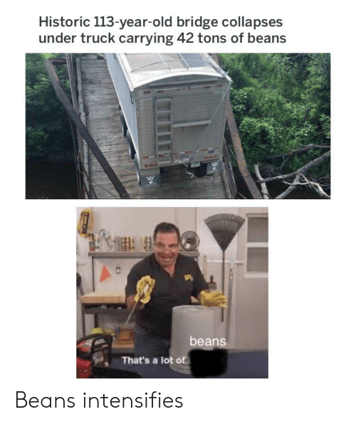 Old, Intensifies, and Bridge: Historic 113-year-old bridge collapses  under truck carrying 42 tons of beans  beans  That's a lot of Beans intensifies